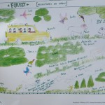 Pictures created by students from local schools about conservation