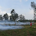 Burning to clear for more cultivated land.