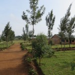 The school compound.