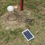 Solar lights for sale at SHED.